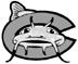 Carolina Mudcats on win streak