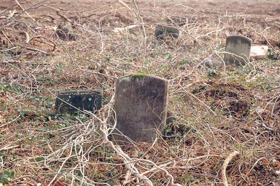 Contractors work around cemetery